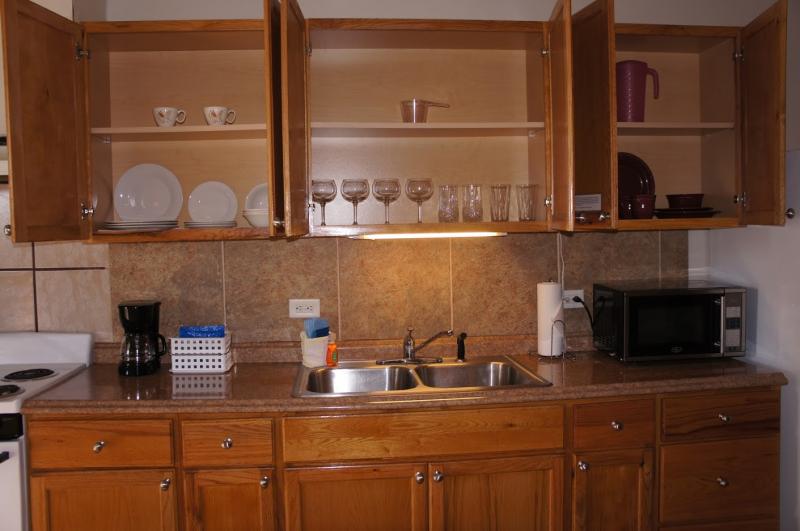 Apt-1-Kitchen