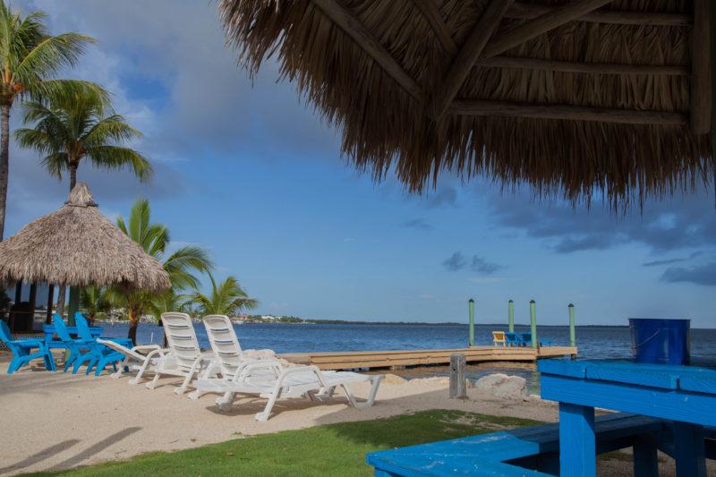 prof beach2